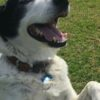 Bern and Tony
