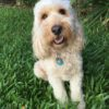 Janet and Rob