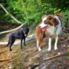 Max and Nicola